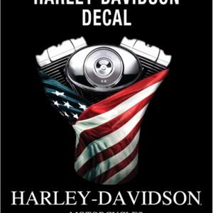 Pegatina Harley-Davidson Justice (GPDC913842) Pegatina clásica H-D Dimensiones 4#Uf020 W x 4#Uf020 H-6