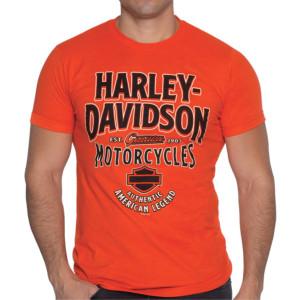 Camiseta hombre Cantabria Harley-Davidson® Men Ambush